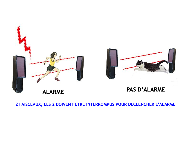 Barrière Infrarouge solaire protection animaux